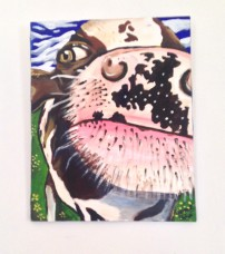 Nosey Cow, Acylic on Canvas 20x24 SOLD