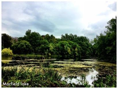 Marlfield lake