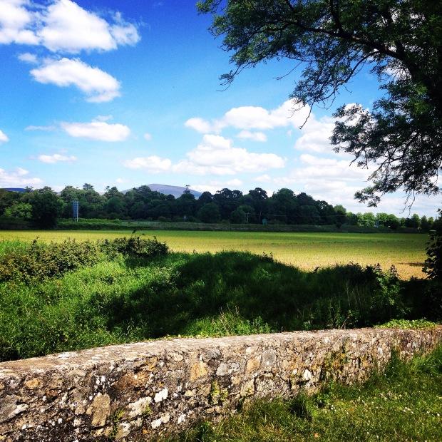 Summer Time in Clonmel