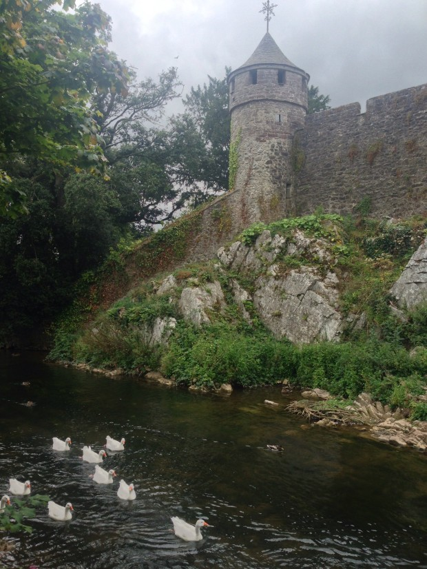 Cahir Castle with its Swan crew