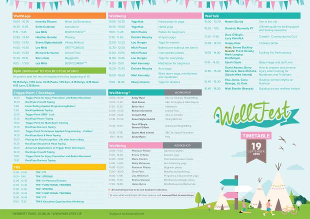 Timetable of the day from www.wellfest.ie